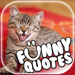 Funny Quotes and Sayings on Pictures – Add Text to Your Photos with Fun Caption Maker