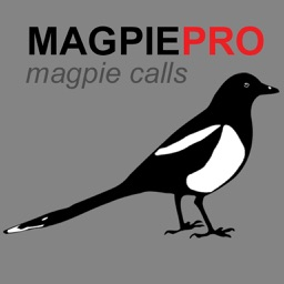 REAL Magpie Calls for Hunting & Magpie Sounds! - (ad free) BLUETOOTH COMPATIBLE