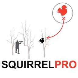 Squirrel Hunting Strategy Squirrel Hunter Plan
