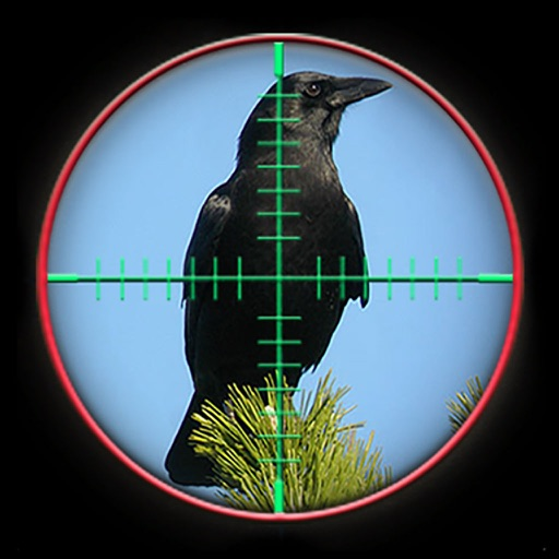 Crow Attack City : Bird Hunting
