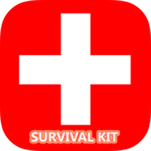 How-to Guide & Survival Kit (Lite)