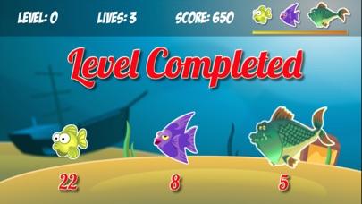 Splashy Hungry Piranha Fish-4