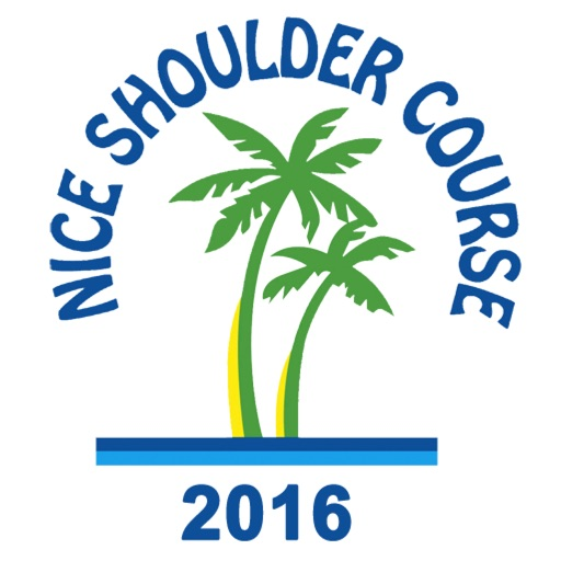 Nice Shoulder Course 2016