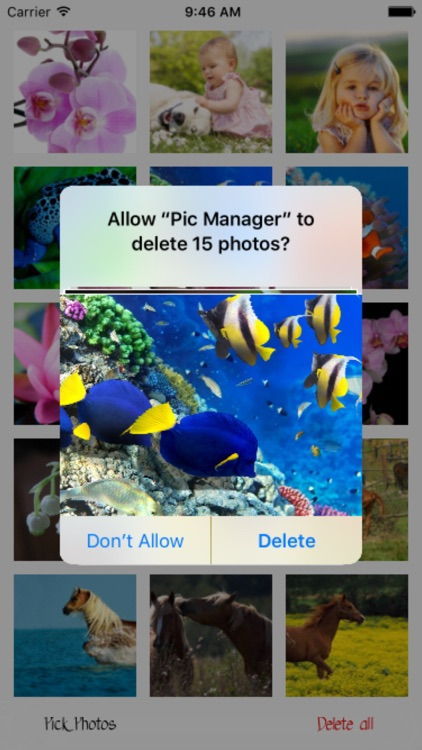 Pic Manager - Fast Deleter