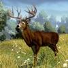 Deer Hunting Simulator 2016