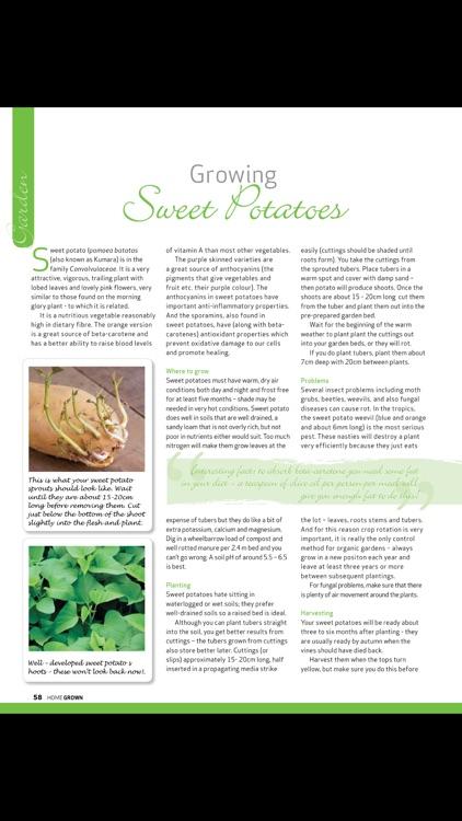 Home Grown Magazine screenshot-3