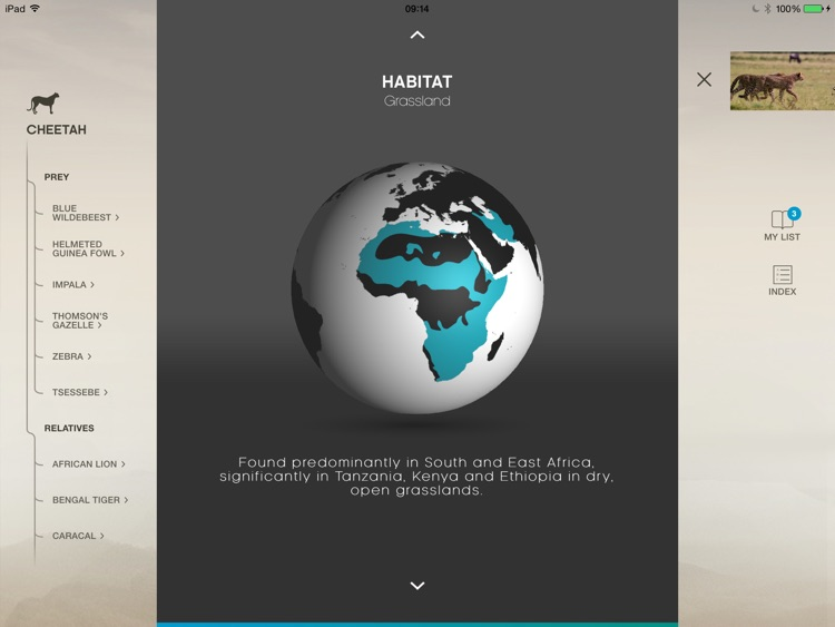 The Hunt - BBC Earth - Natural History Interactive TV Series screenshot-4