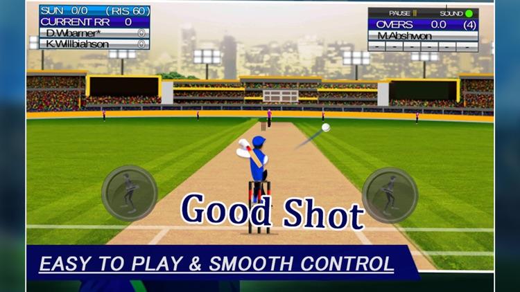 IPL Cricket Craze 3D screenshot-3