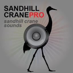 Sandhill Crane Hunting Calls - With Bluetooth - Ad Free