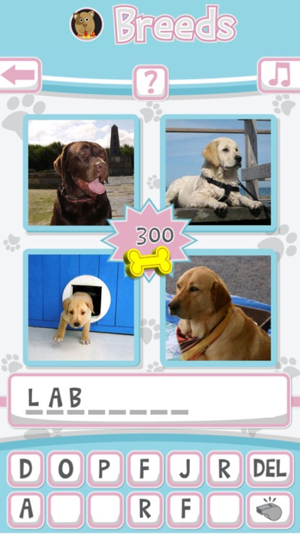Breeds: The Dog Name Game - the Favorite 'Guess the Word' game of Dog Lovers
