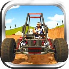Activities of Buggy Stunt Driver