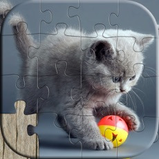 Activities of Cat Puzzles for Kids - Relaxing photo picture jigsaw puzzles for kids and adults