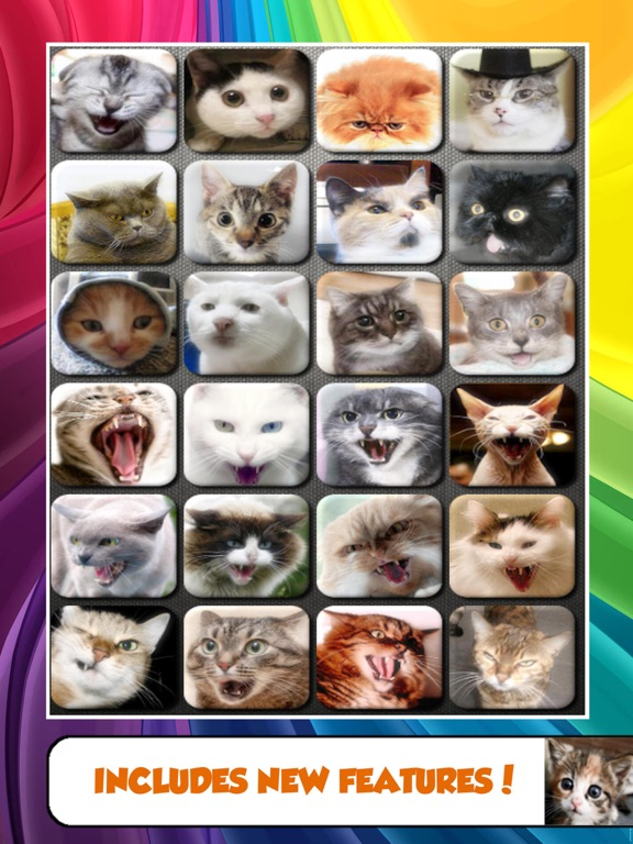 Cat and Kitten Sounds - Talk and Play with Your Cat with Free Kitty SFX screenshot