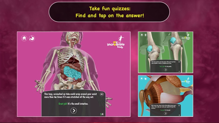 My Incredible Body - Guide to Learn About the Human Body for Children - Educational Science App with Anatomy for Kids screenshot-4