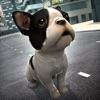 おもしろ 動物 ペット 犬 Vs. アニメ 少年 ガール 冒険 楽しい 物語
