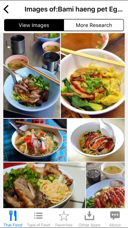 Guide to Thai Food screenshot-3