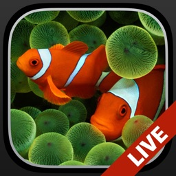Aquarium Moving Wallpapers for Lock Screen free: Animated backgrounds for iPhone