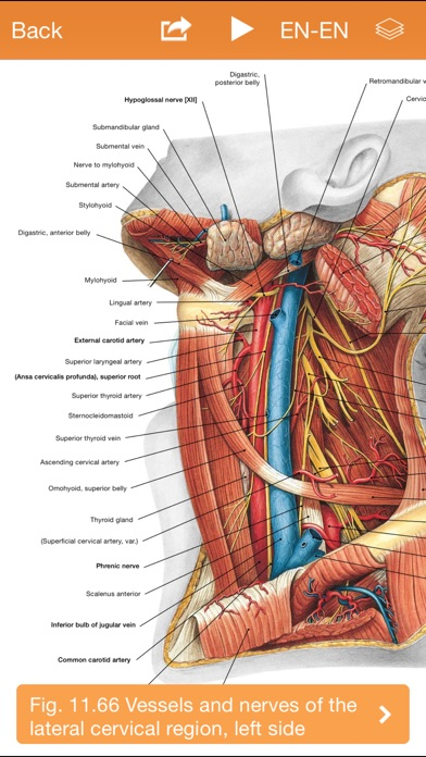Sobotta Anatomy Atlas Free - Revenue & Download estimates - App ...
