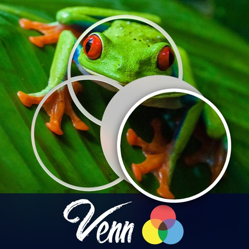 Venn Frogs: Overlapping Jigsaw Puzzles