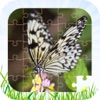 Butterfly Jigsaw Puzzle Kid Game 免费儿童游戏 男孩和女孩