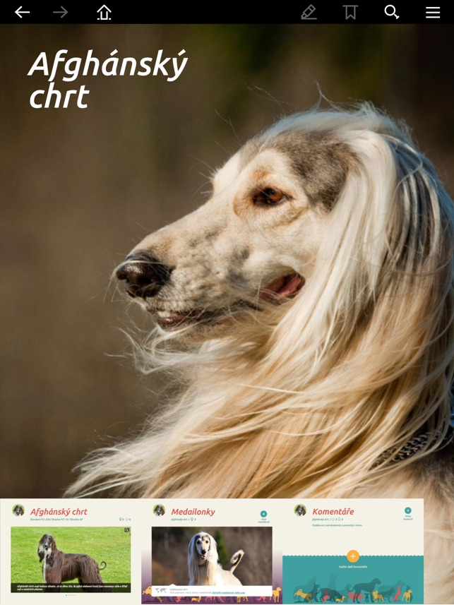 8d662b15b66 Můj pes on the App Store