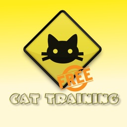 How You Can Train your Cat Free