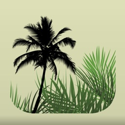 Palm ID Key