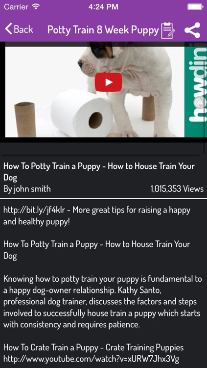 Potty Training Guide For Puppy