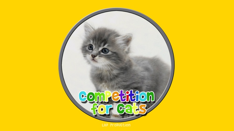 competition for cats - free game screenshot-0