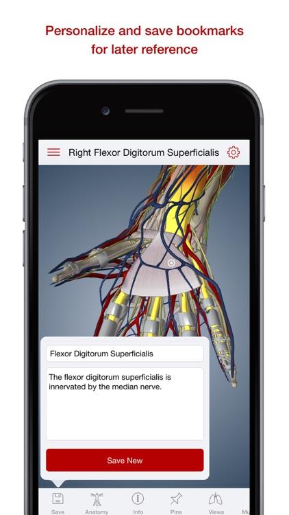 BioDigital Human: 3D Anatomy Explorer