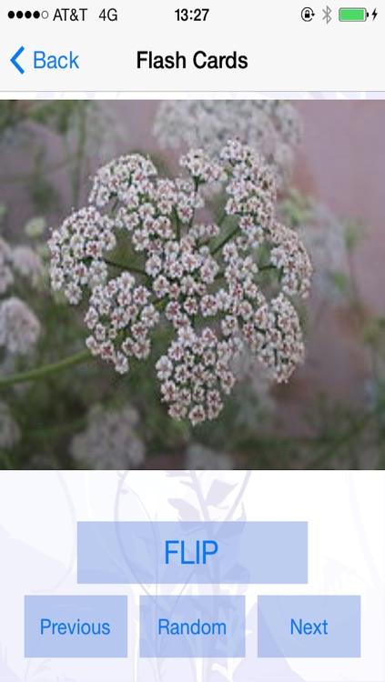 Herb n Spice ID screenshot-3