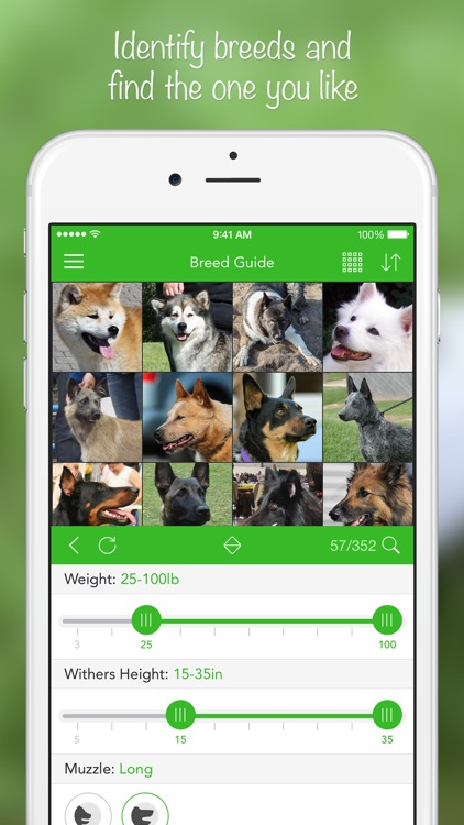 iKnow Dogs 2 PRO - NATURE MOBILE - Dog Breed Guide and Quiz Game screenshot-1
