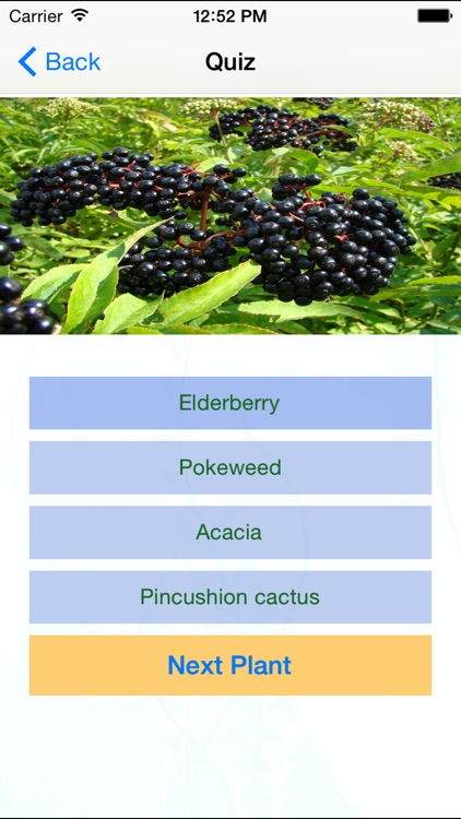 Edible and Poisonous Plants