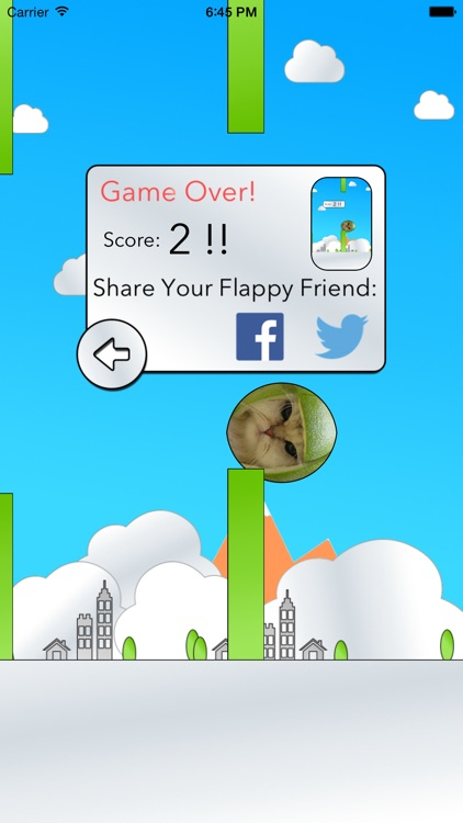 Flap Your Friends! screenshot-4