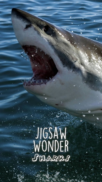 Shark Puzzles for Kids Jigsaw Wonder Collection Screenshots
