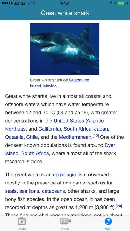 Shark Diving screenshot-4