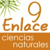 Vector Z | Enlace Ciencias Naturales 9