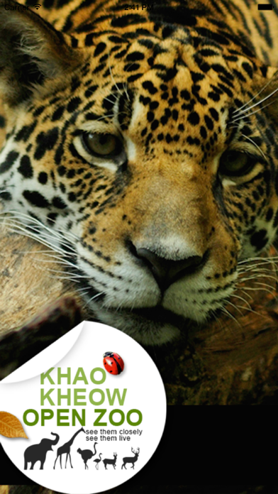 Khao Kheow Open Zoo screenshot one