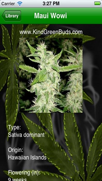 Marijuana Handbook