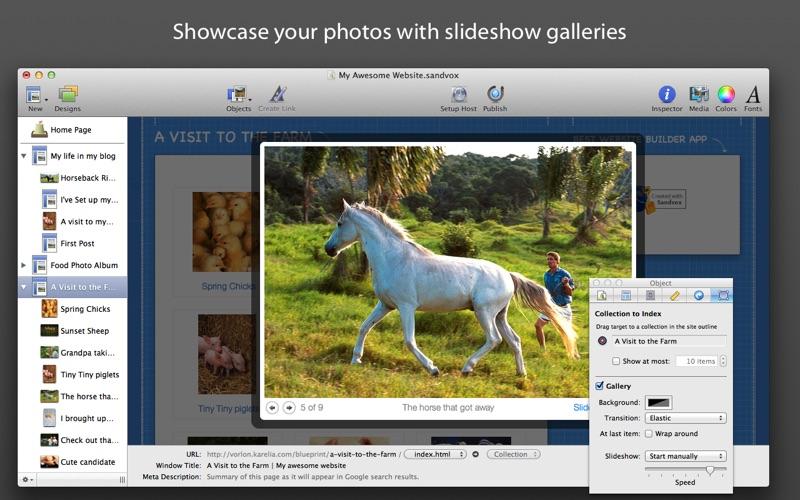 Sandvox Screenshot