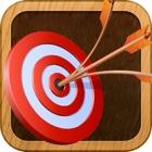 Robin's Hoody Archery icon