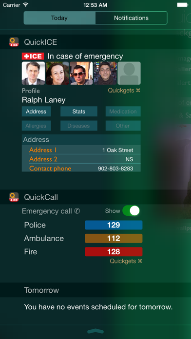 download Quickgets ICE - In Case of Emergency info & call widgets and app apps 3