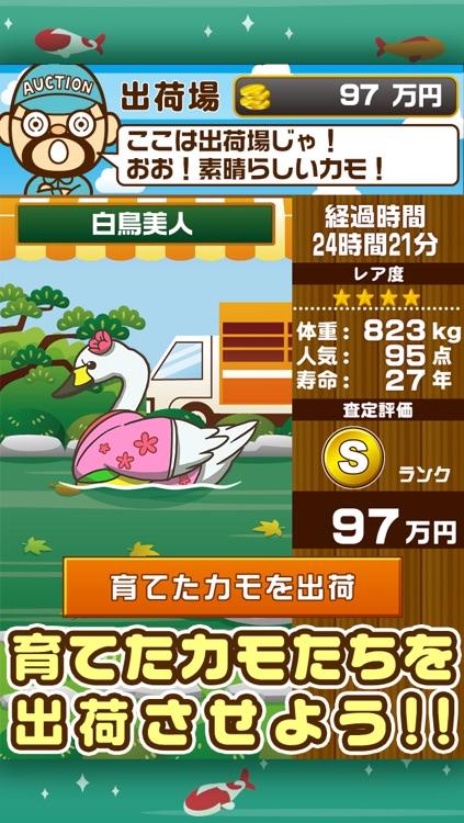 カルガモの親子~鴨を育てる楽しい育成ゲーム~ screenshot-3