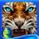Surface: Cinéville HD - Objets cachés, mystères, puzzles, réflexion et aventure
