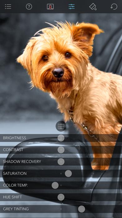 Color Splash app image