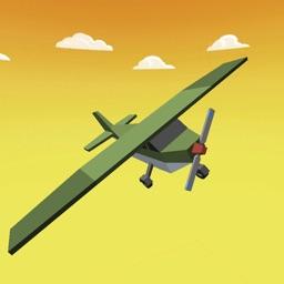 Mini Plane Flying