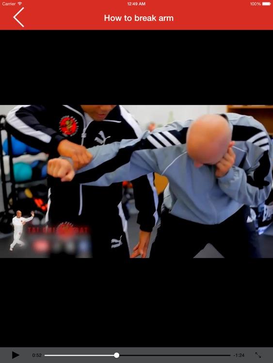 Tai Chi Combat for iPad