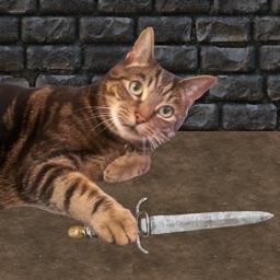 Game of Catz