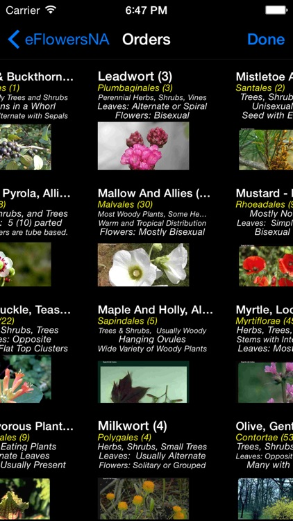 Wildflowers of North America - eFlowersNA - A Wildflower App