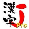 漢字J Pro   6321漢字 手書き 筆順 読み